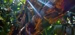 Boomslang, Kirstenbosch