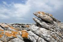 Rocky-seas